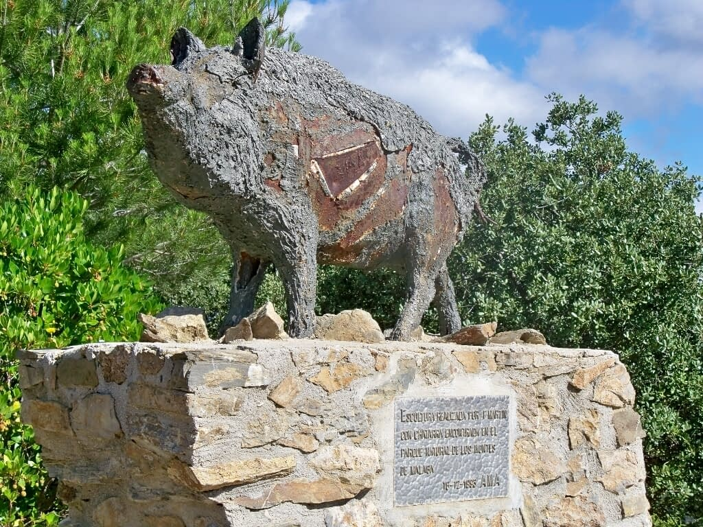 Malaga national park