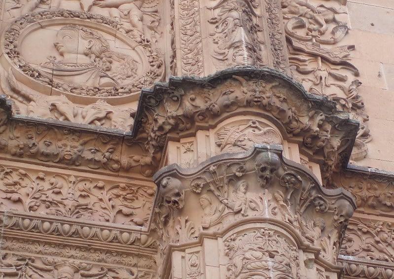 Frog Salamanca