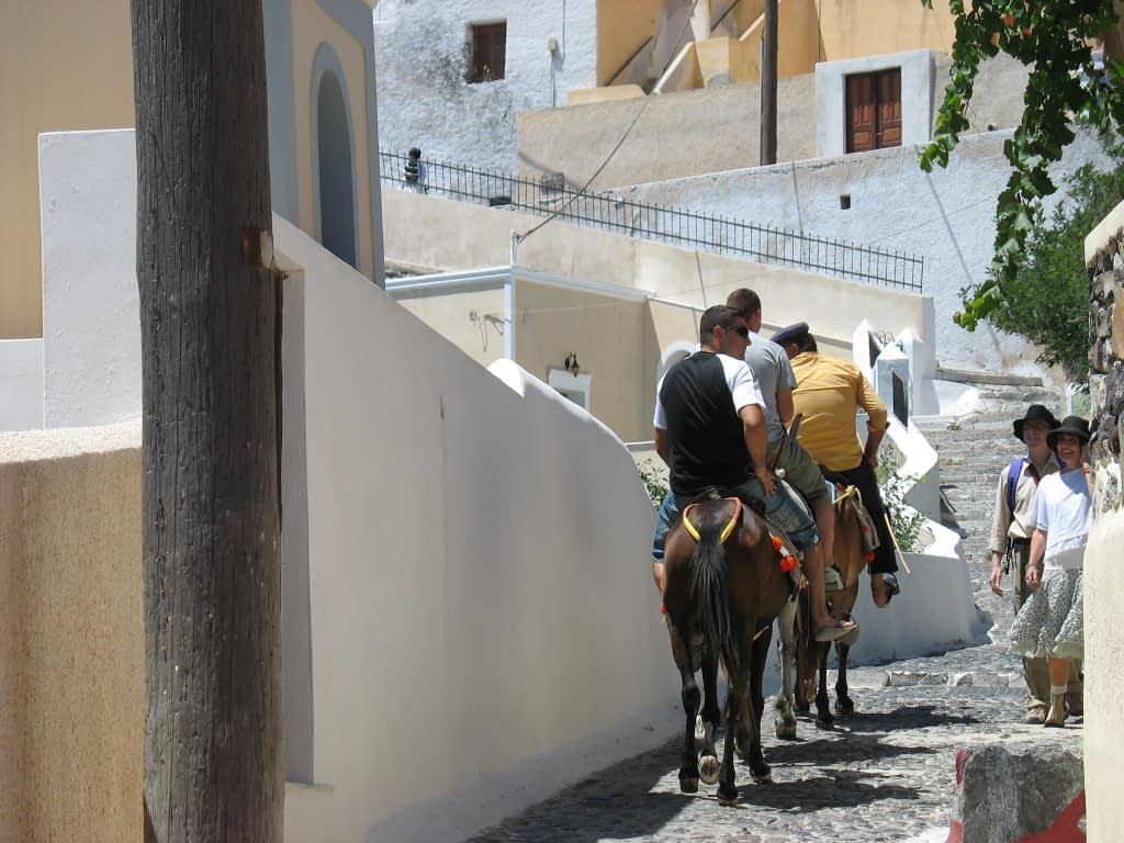 donkey travel